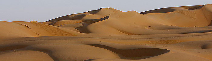 Dawn sunlight hits the dunes of the of Al Batin near Liwa in the United Arab Emirates. REUTERS/Steve Crisp.