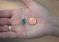 (2)	Light detecting MK10S geolocator (1.1g) and U.S. penny, taken by Juan Bahamon.