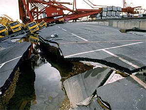 Global supply chains were affected by infrastructure and production breakdowns subsequent to the Japan earthquake.