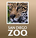 Visit the San Diego Zoo Website